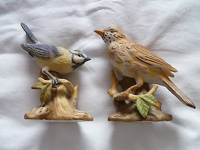 Blue Tit And Mistle Thrush Figures