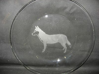 """New Etched Siberian Husky 10"""" Glass Plate"""