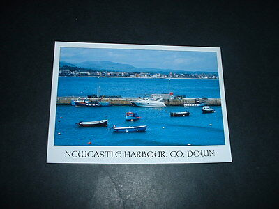 NORTHERN IRELAND NEWCASTLE HARBOUR Co DOWN  POSTCARD NOT POSTED