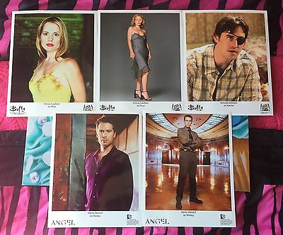 5 X Angel & Buffy Official Photos 8x10 Glossy