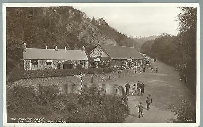 Old Postcard   R.m.&s  The Forest Glen The Wrekin   Shropshire   Posted  1954