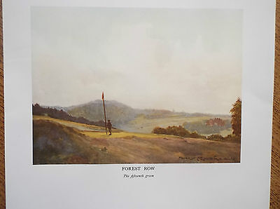 Golf Course Print Forest Row Facsimile Of Original Painting 1910 Harry Rountree
