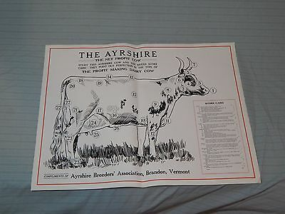"Vintage Ayrshire Cow Breeders Scorecard Poster 24"" x 18"""