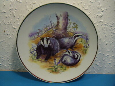 Wildlife Of Britain by Susan Beresford Badgers Collectors Plate.Diameter 6 Inch