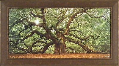 THE TREE by Moises Levy 24x42 FRAMED PRINT Angel Oak Charleston SC Southern
