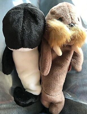 2 Ty Beanie Babies Jolly the Walrus & Waves the Killer Whale Orca Baby Animal