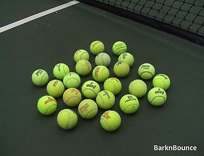 25 USED Tennis Balls - Dog Toys - Catch - Table & Chair feet - Baseball - Walker