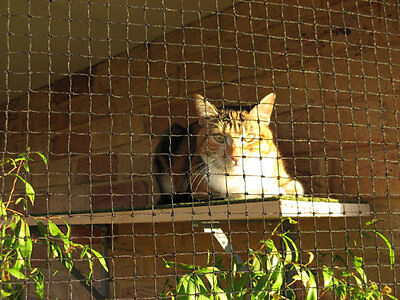 Cat Enclosure Netting  5m x 1.8m Low-Vis 19mm - FREE SHIPPING