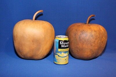 Lot of 2 Large Sized Apple Gourds-Dried & Cleaned