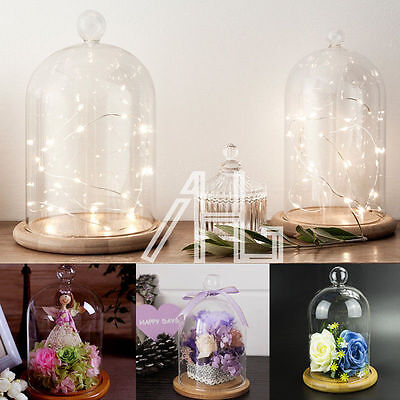 Large Glass Display Cloche Bell Jar Dome Wooden Base Christmas DIY Gift