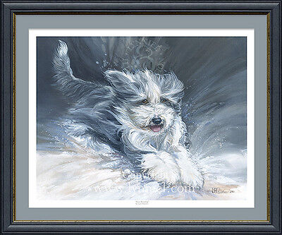 BEARDED COLLIE 'Snow Bounding' Christmas 2016 fine art dog print