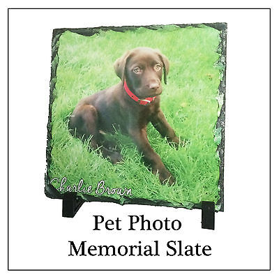 Pet Memorial Plaque, Photo Slate & Stand  ANY PIC Dog Cat Rabbit etc