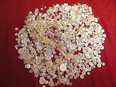 Vintage Buttons White/Pearl and more Pickup From Estate Sale Sewing Buttons