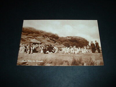 IRELAND  DOON WELL Co  DONEGAL  RP POSTCARD  1920s