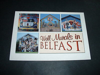 Northern Ireland Wall Mural Belfast Postcard New