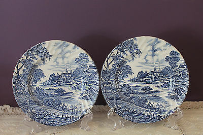 2 Ridgway Staffordshire Bread And Butter Plates - Meadowsweet