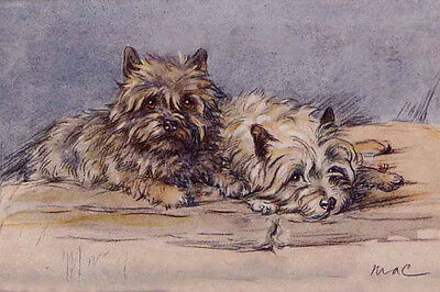Cairn Terrier Dogs 1930's by Lucy Dawson ~ LARGE New Blank Note Cards
