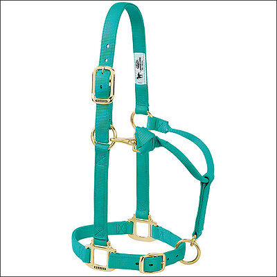 "Weaver Western Tack Adjustable Horse Halter 1"" Average Horse Brass Snap Green"