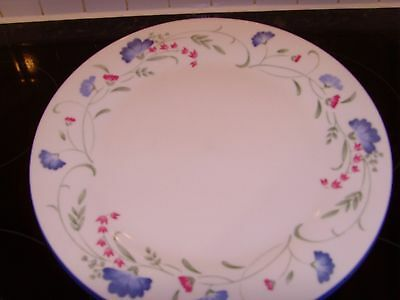 2 Royal Doulton Expressions Windermere Dinner Plates Excellent Condition