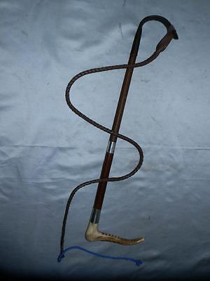 Antique Gentlemans 2 Collar Hallmarked Champion & Wilton Hunting Whip & Lash
