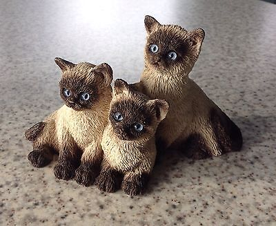 Cat Kitten group Figurine - Persian / Himalayan - Blue Eyes Very Good Condition