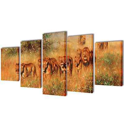S# Set of 5 Lion Canvas Prints Framed Wall Art Decor Painting 100x50cm Living Ro