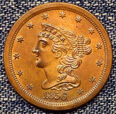 1856 Braided Half Cent Red Brown MS++++ Coin