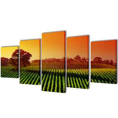 S# Set of 5 Field Canvas Prints Framed Wall Art Decor Painting 100x50cm Living R