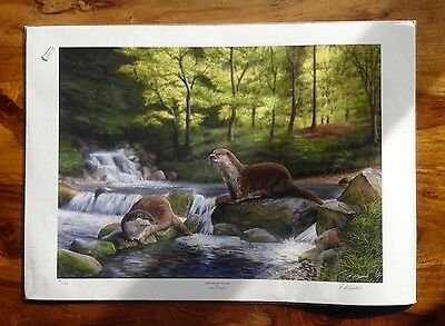 """Limited Edition Print by Nigel Artingstall """"Midsummer Stream """" number 41/195"""