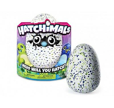 Hatchimals Dragon Draghetto interattivo - Uovo Interattivo con Animaletto