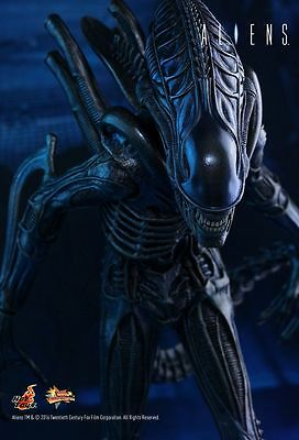 Hot toys Aliens Alien Warrior 1/6th scale Collectible Figure  -NEUF