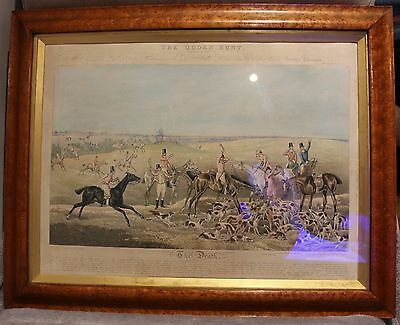 ALKEN Henry The Quorn Hunt Plate VIII R Ackermann 1835 Birds Eye Maple Frame