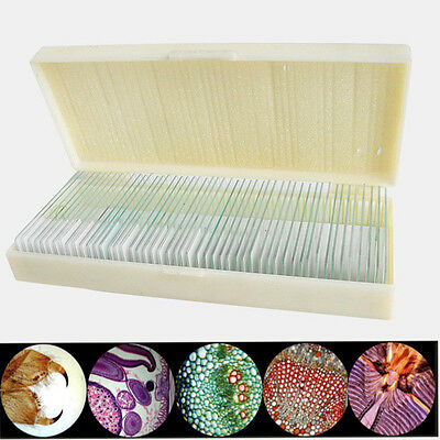 50pcs Glass Prepared Basic Science Microscope Slides Sample Biology Pathology