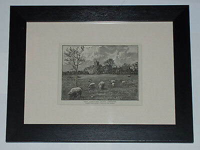 Print circa 80 yrs old Engraving The Royal Agricultural College Cirencester