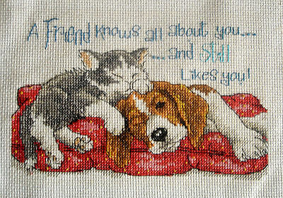 Dimensions Completed Counted Cross Stitch Tapestry Unframed A Friend Knows