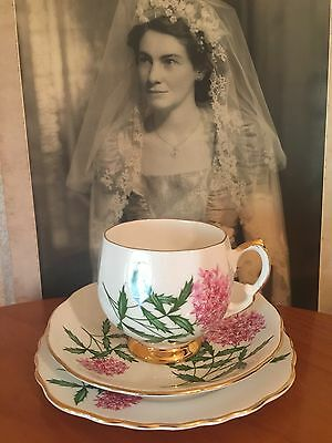 Antique Vintage Trio Cup Saucer Plate Afternoon High Tea Colclough Bone China