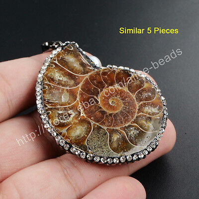 5Pcs Handmade Ammonite Fossil Pendant With CZ Paved Edge Jewelry Making TJA329