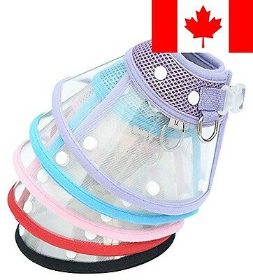 Recovery Pet Cone E-Collar for Cats and Small Dogs from ForeYY - Elizabethan ...