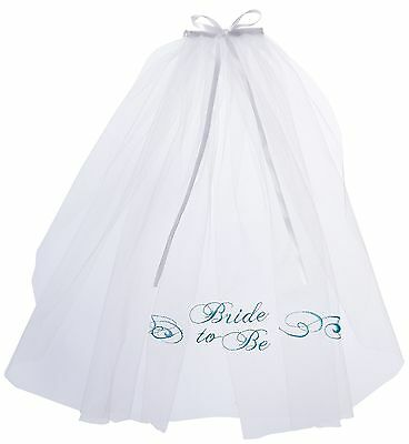 Lillian Rose Embroidered Bride to be Veil 20.5-Inch