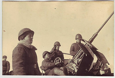 Wwii Press Photo: Russian Anti-Aircraft Gun In Action