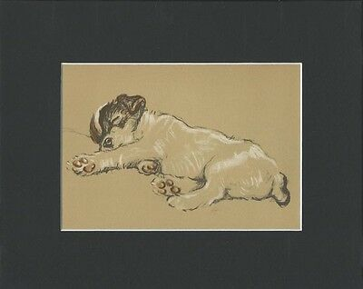 Vintage Dog Print Jack Russell Puppy Dog  by Lucy Dawson 1937 SLEEPING