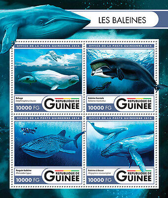 GUINEA REP. 2016 ** Diving Taucher M/S #424a