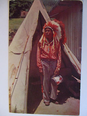 Indianer, Cherokee Häuptling, North Carolina, ca. 1960 (41180)