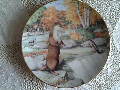 Otter At A September Waterfall Plate The Woodland Year Peter Barrett