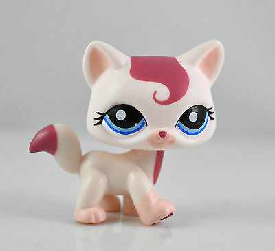 Pet Short hair Cat Child Girl Figure Littlest Toy Loose Xmas LPS844
