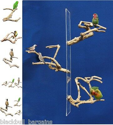 JAVA MULTI BRANCHES Finch Budgie Parakeet Parrot Mccaw Reptile Branch Perch
