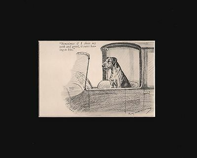 "Airedale Dog SHOWING HIS TEETH by M. Kirmse RARE Print 1928 8x10"" Mat"