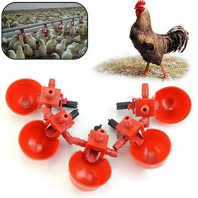1/5Pcs Automatic Bird Coop Feed Poultry Chicken Fowl Drinker Water Drinking Cups