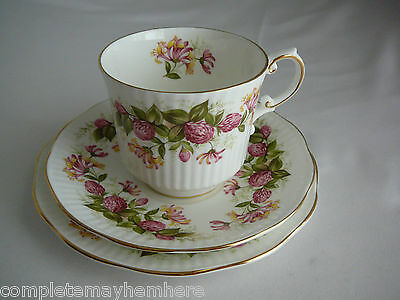 Queen's Rosina China England trio cup saucer plate - Wild Flowers - tea party
