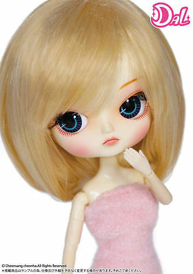 DAL My Select Frara Groove fashion doll pullip in USA